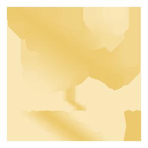 Энергетикс